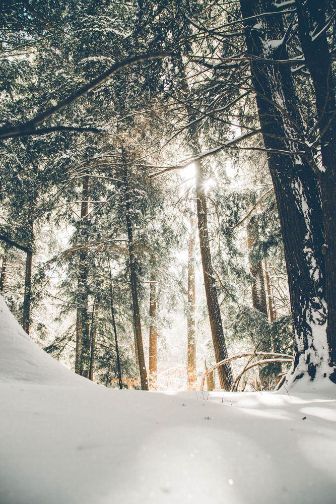 Den kalde vinteren i Norge krever jakker